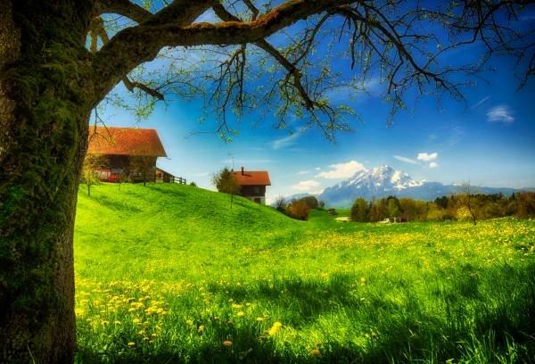 картинки весна природа - Весна - Времена года - Фото - Фото природы, красивые картинки, обои