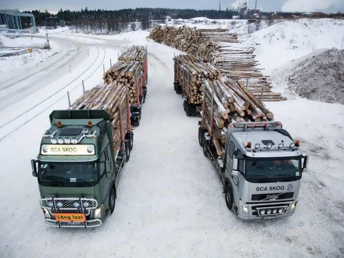Лесовоз Volvo: обзор моделей