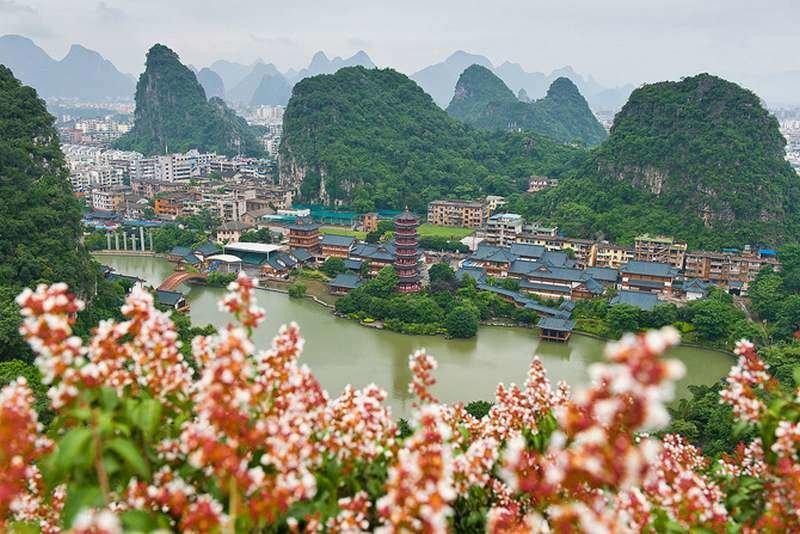 Цветы на города в горах