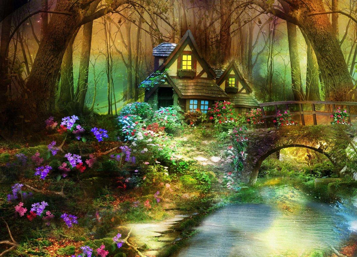 картинки красивый волшебный лес этом