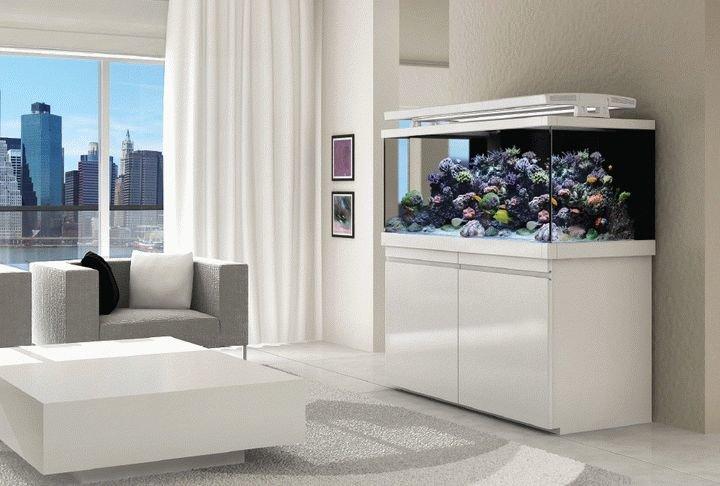 аквариум в минималистическом интерьере гостиной 1
