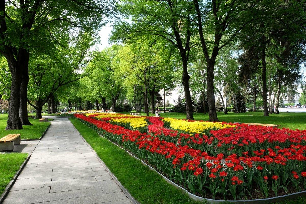 Городской парк картинки