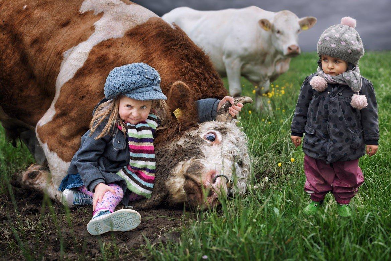 Прикольные картинки люди и животные, картинки поздравления