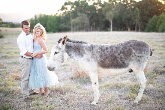 Жених, невеста, и ослик