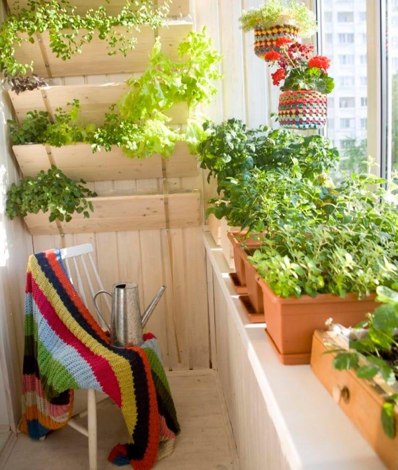 """Украшаем балкон зеленью"""" - карточка пользователя heyderli.yu."""