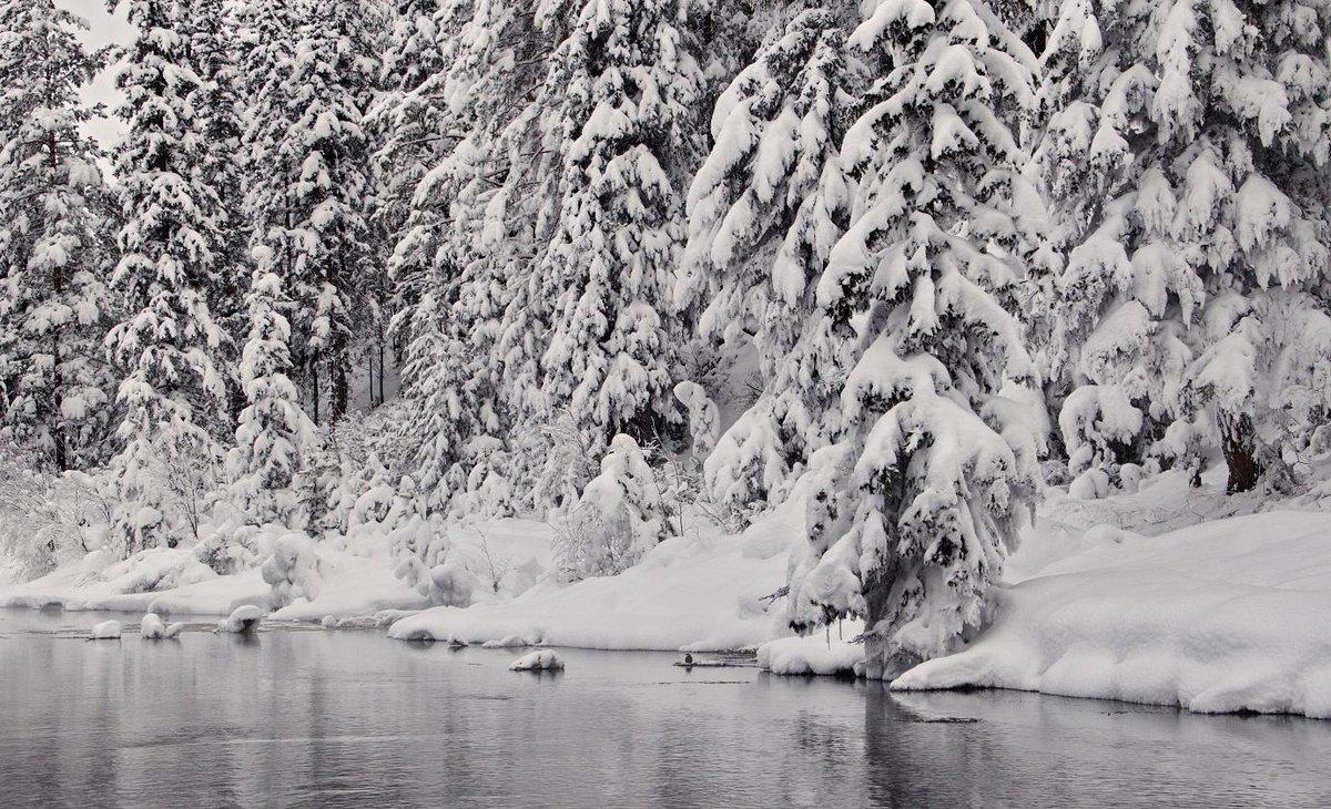 черная зима картинки умельцы при изготовлении