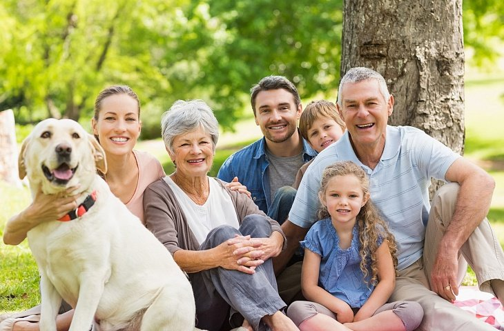 дружная семья картинка