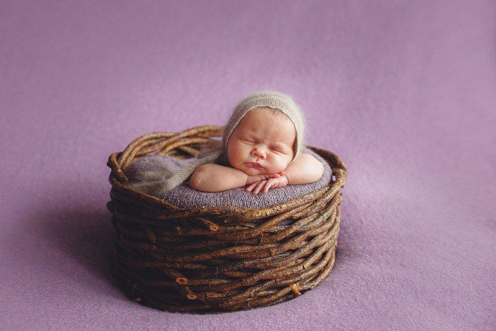 корзине в фотографии новорожденных