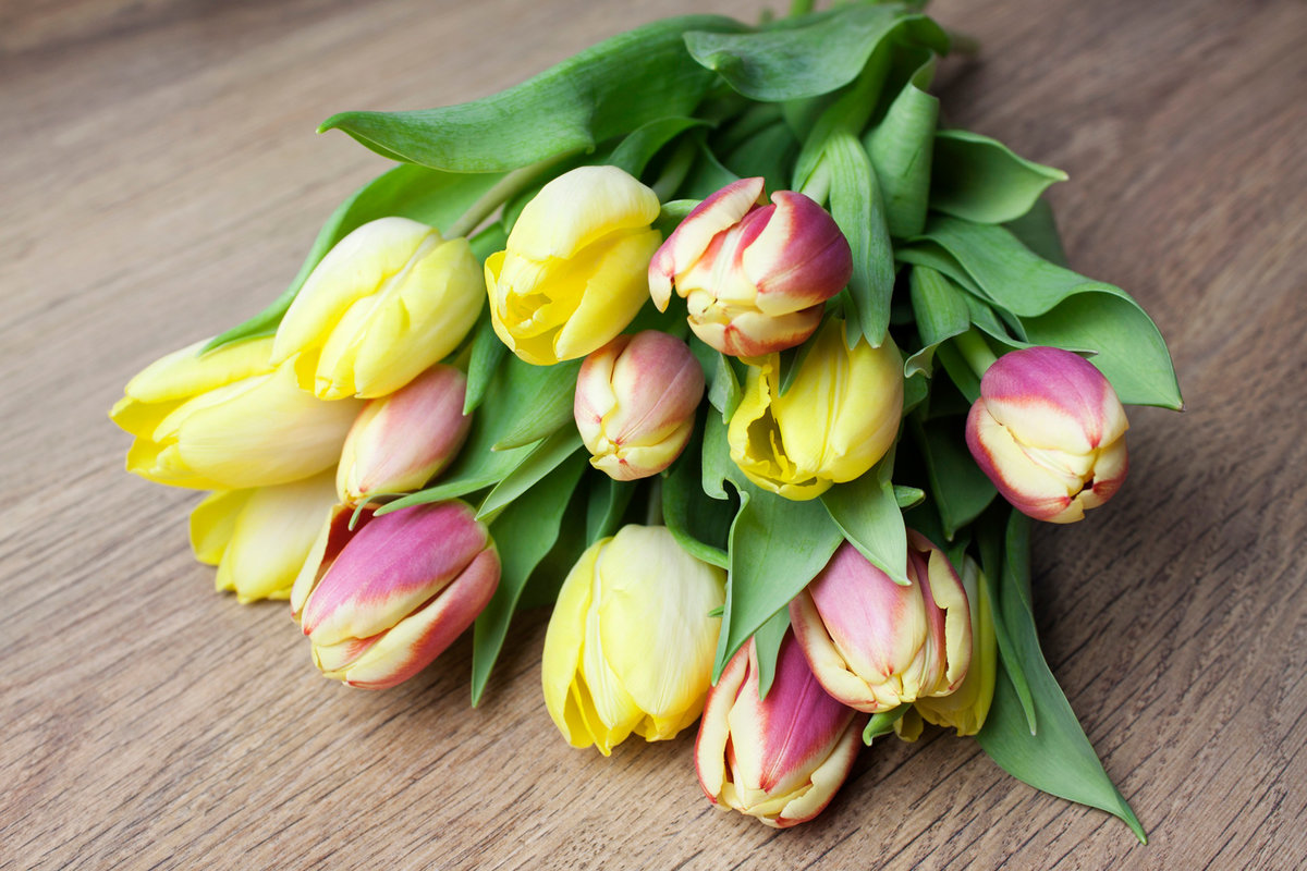 что букет тюльпаны фото картинки конечно же, фото