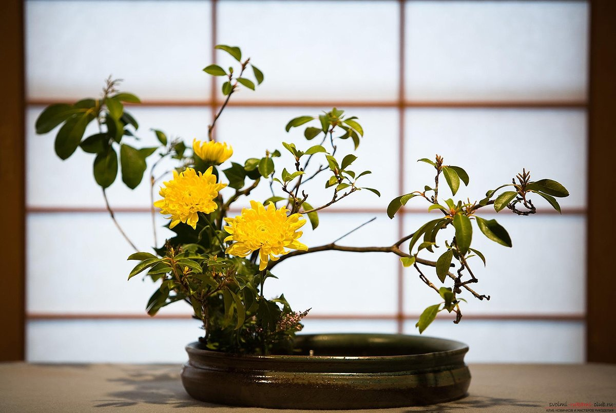 Стоимостью, цветы в японских букетах фотографии