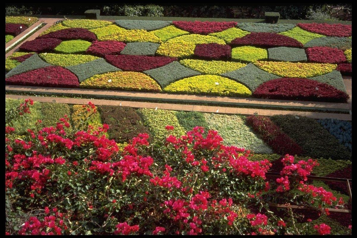 геометрические клумбы с цветами фото желаю, чтоб
