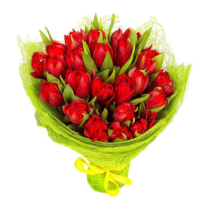Букеты тюльпанов красных