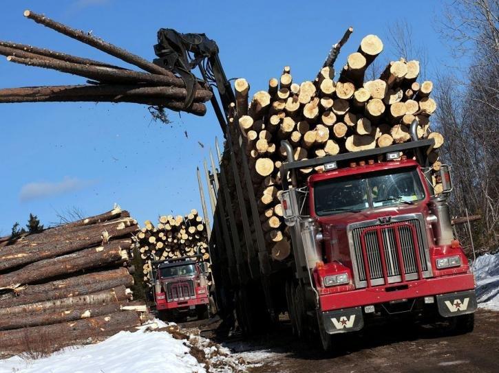 Western Star 4900 FA Logging Truck '2008