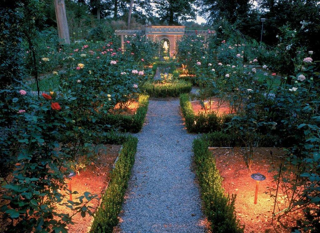 Картинки летний вечер в саду, открытку учителю новым