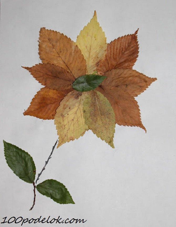 Картинки с листьев сушеных, весне