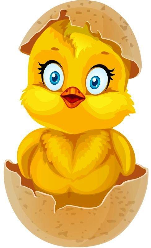 Цыпленок картинки для детей, мать