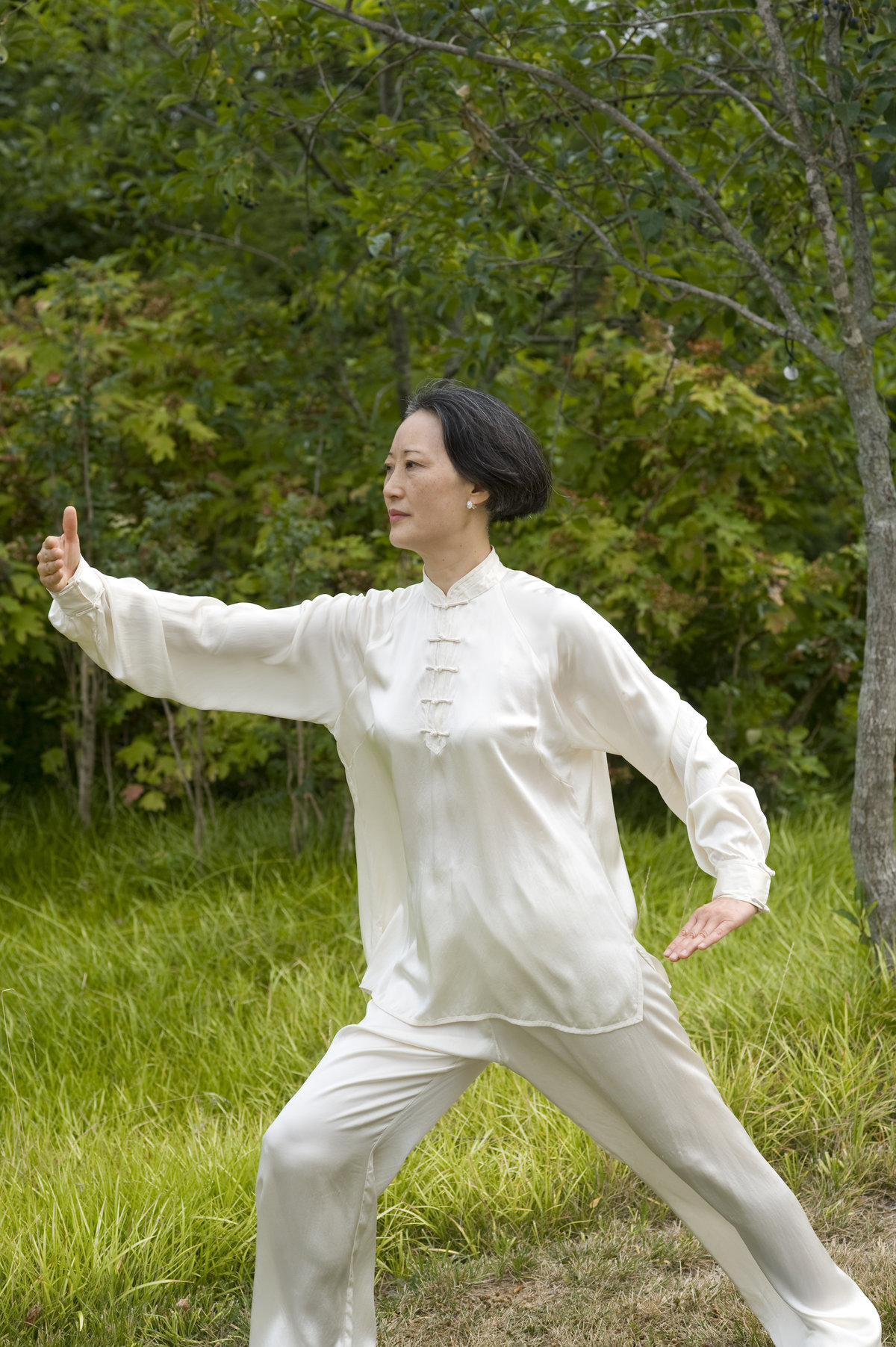 nih tai chi Relevant, quality videos on tai chi posted every day chu min yi demonstrates workout routines on tai chi training apparatus that he developed to further his skills in the traditional wu style of tai chi.