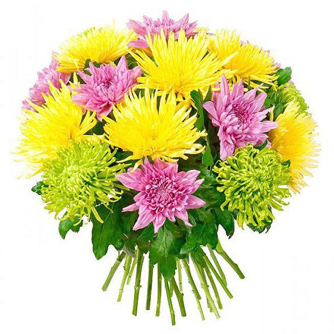 Днем, картинки цветы хризантемы букеты