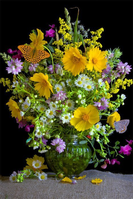 Гифка букет полевых цветов
