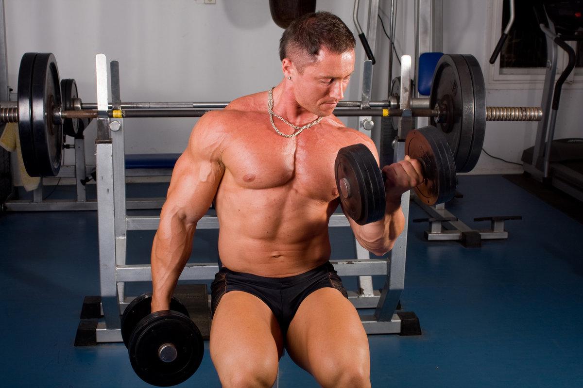 фотографии основных упражнений бодибилдинга тренировки