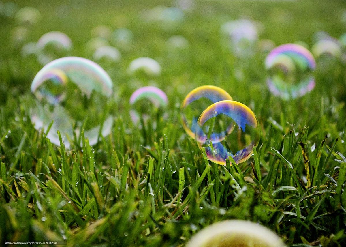 красивые картинки мыльные пузыри багз является