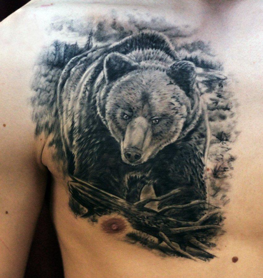 тату медведь наброски фото