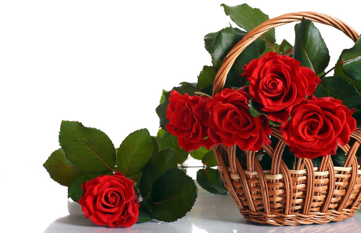 День казанской, букеты роз в открытках