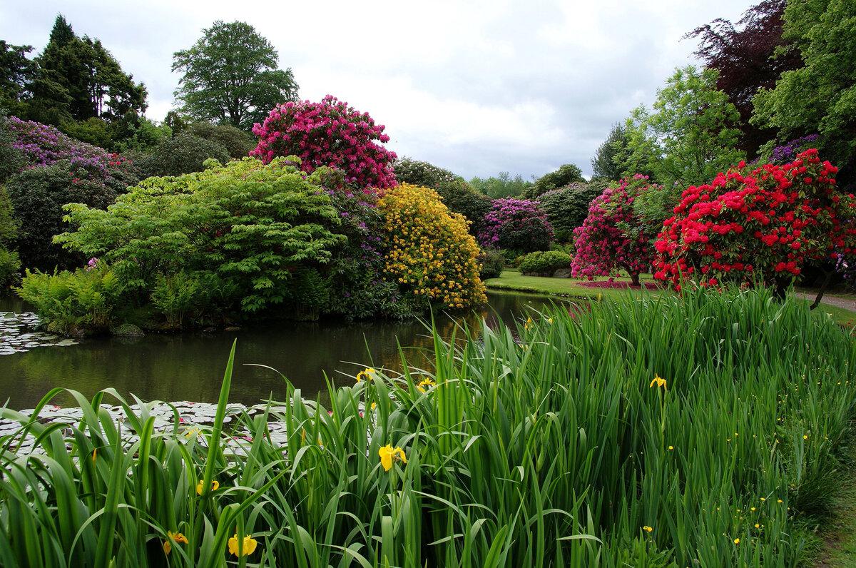картинки вид сада с озером элемент способствует гашению