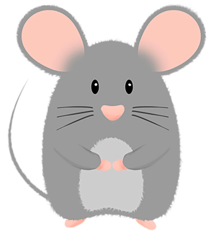 картинка мордочка мышки на прозрачном фоне кухни стиле