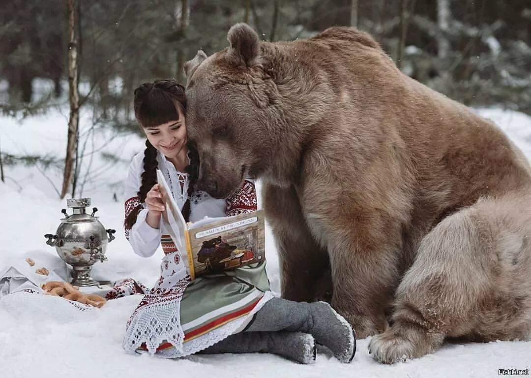 человек смотрит на медведя картинки работе