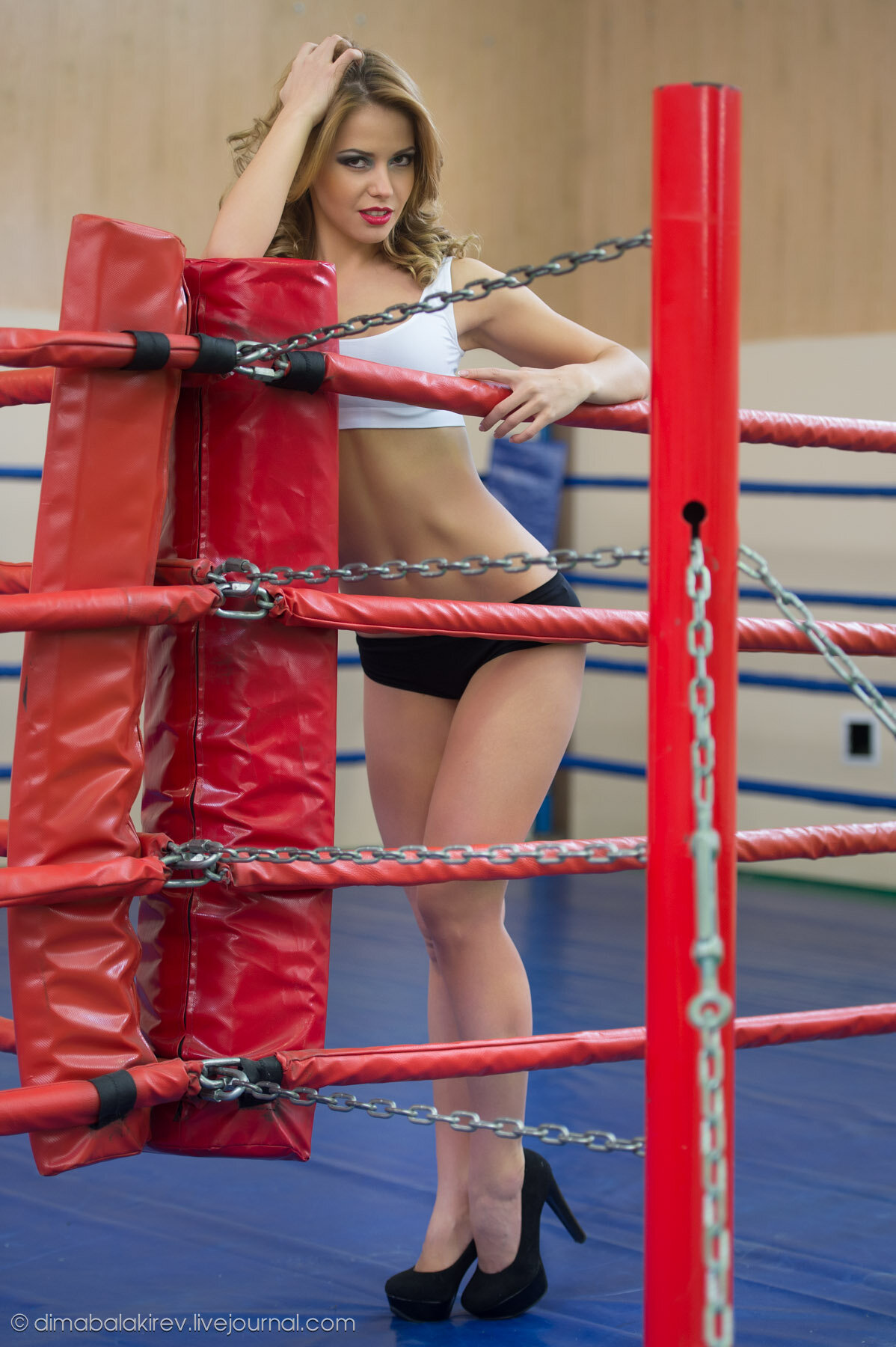 Ring girls top hottest boxing erotic pictures hd