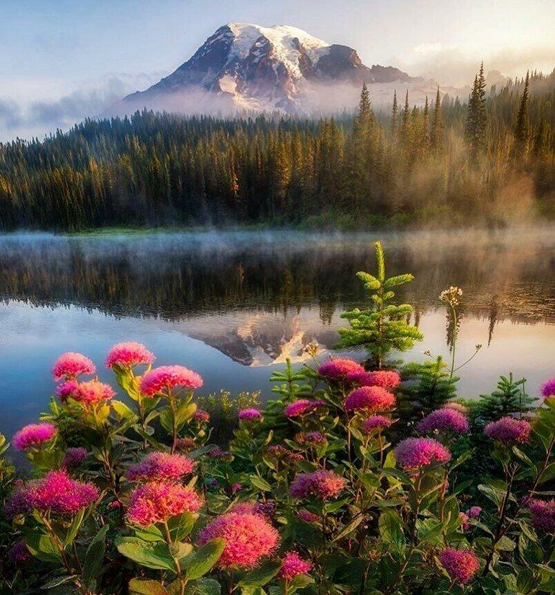 фото картинки как прекрасен этот мир