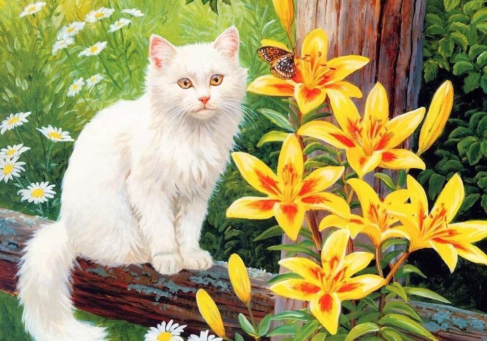 можете картинка красивой белой кошки в цветах тонких слайсов салями