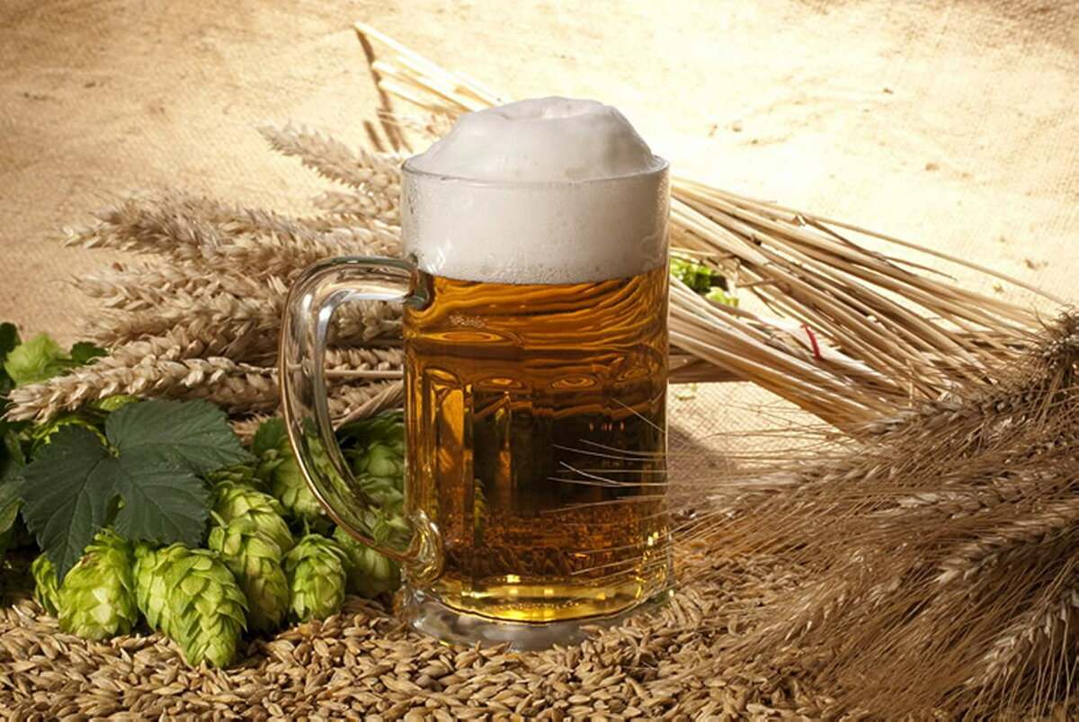 Пиво солодов картинки