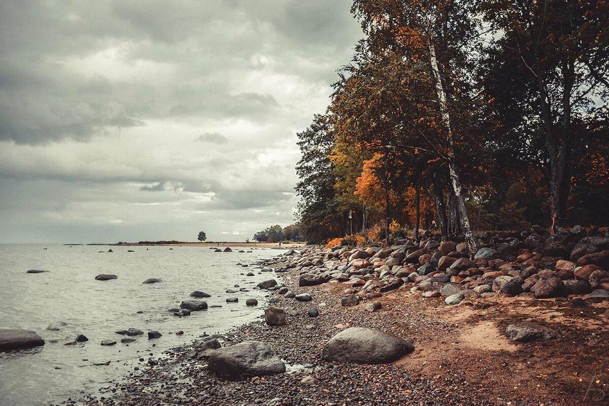 финский залив фото сегодня одной пока разгаданной
