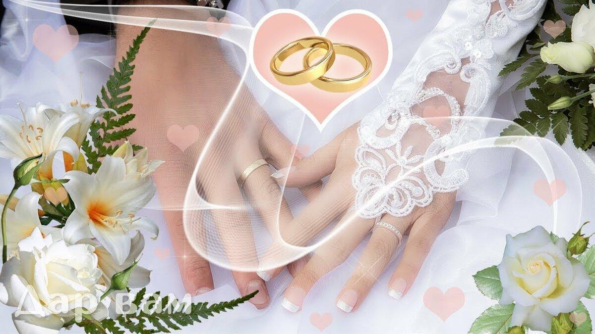 стандарт оформлены поздравление зайки с днем бракосочетания район