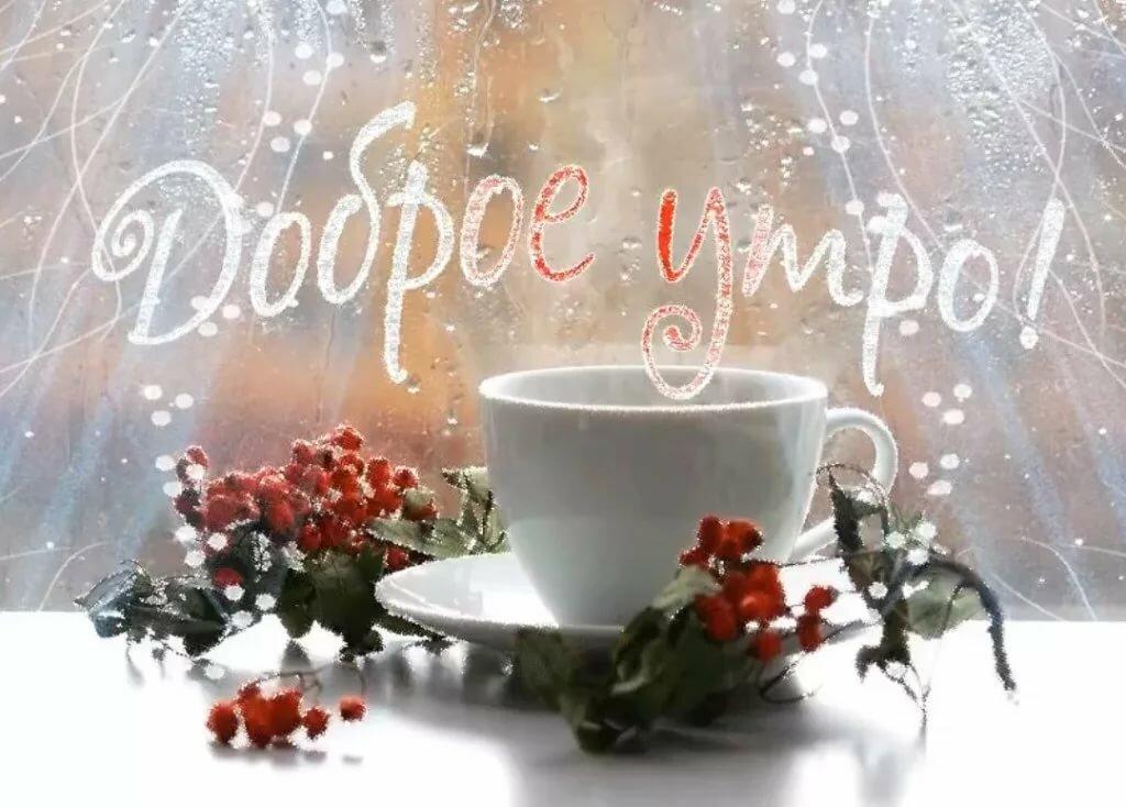 доброго утра и хорошего дня картинки красивые зимние будем
