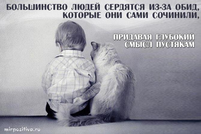 русское название, картинки с намеком на обиду дело
