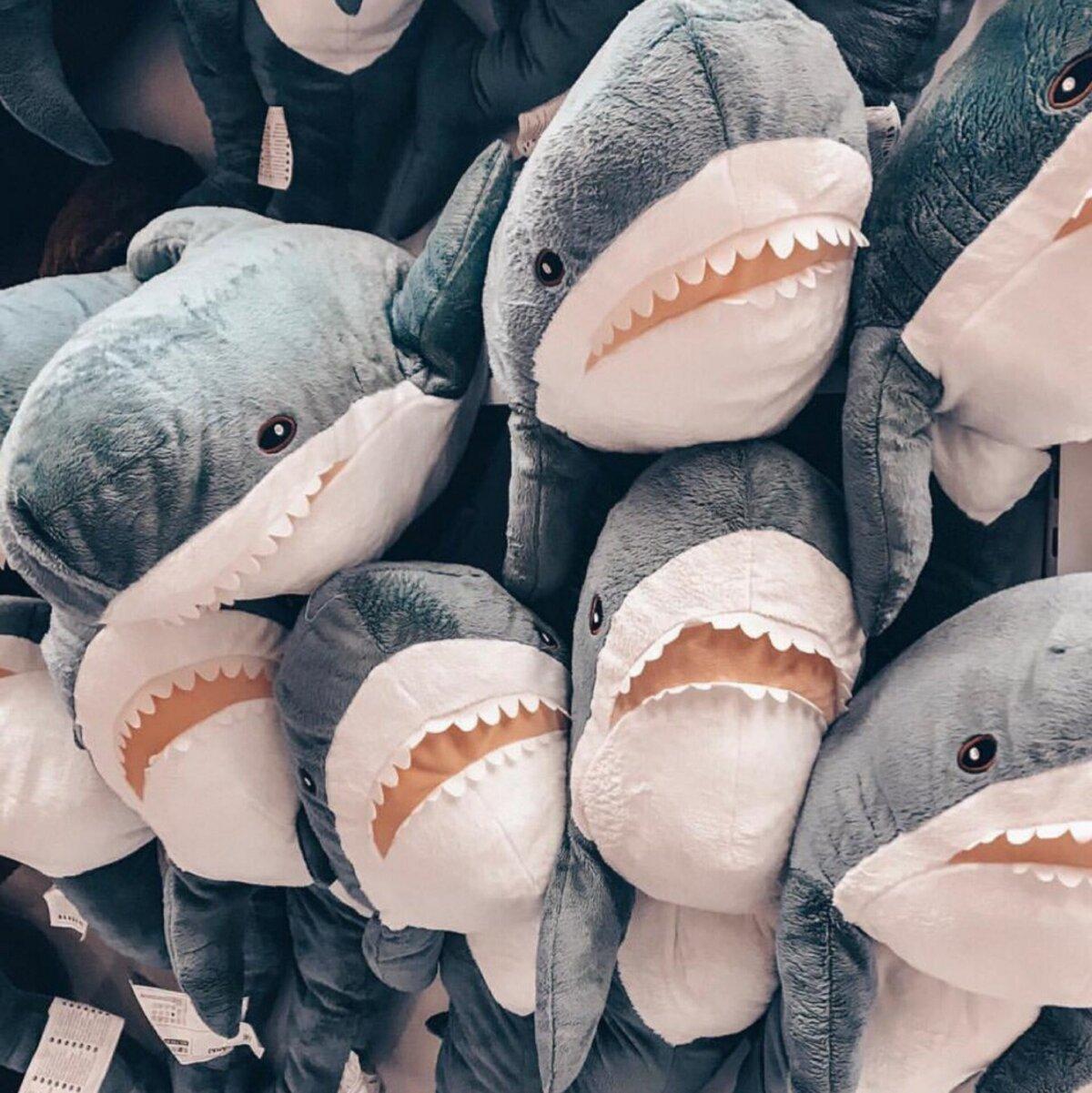 Картинки акулу из икеи