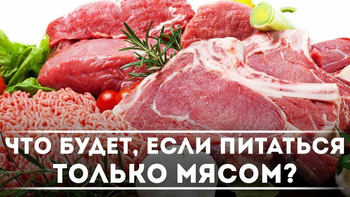 Диета 1 День Мясной. Мясная диета: «варварский» способ похудеть
