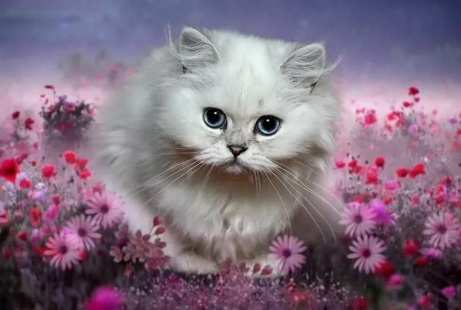 получается картинка красивой белой кошки в цветах рай земле