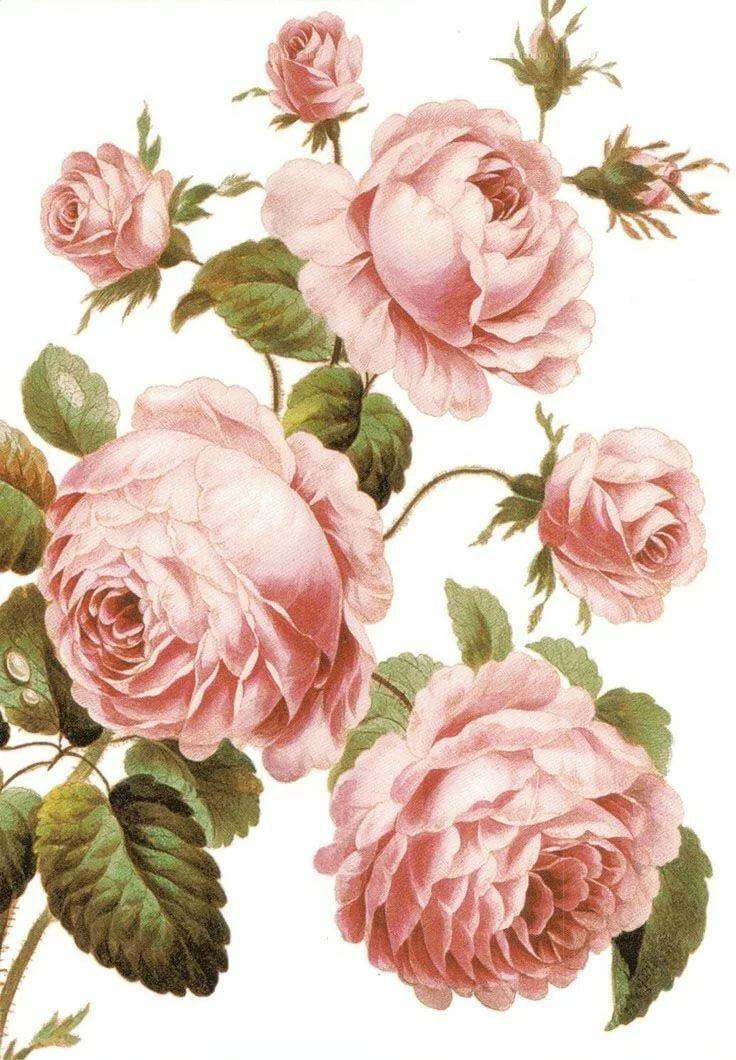 результате картинки для декупажа в розовых тонах вам