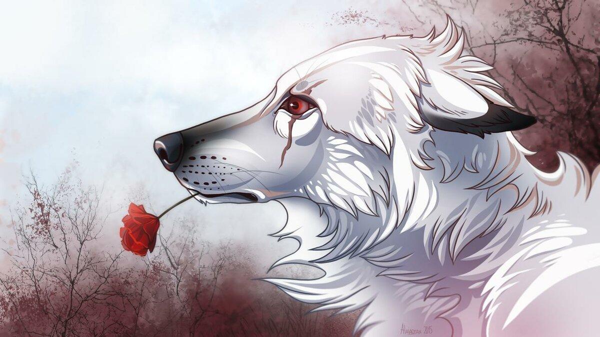 хочу, картинки раненых волков знает умеет