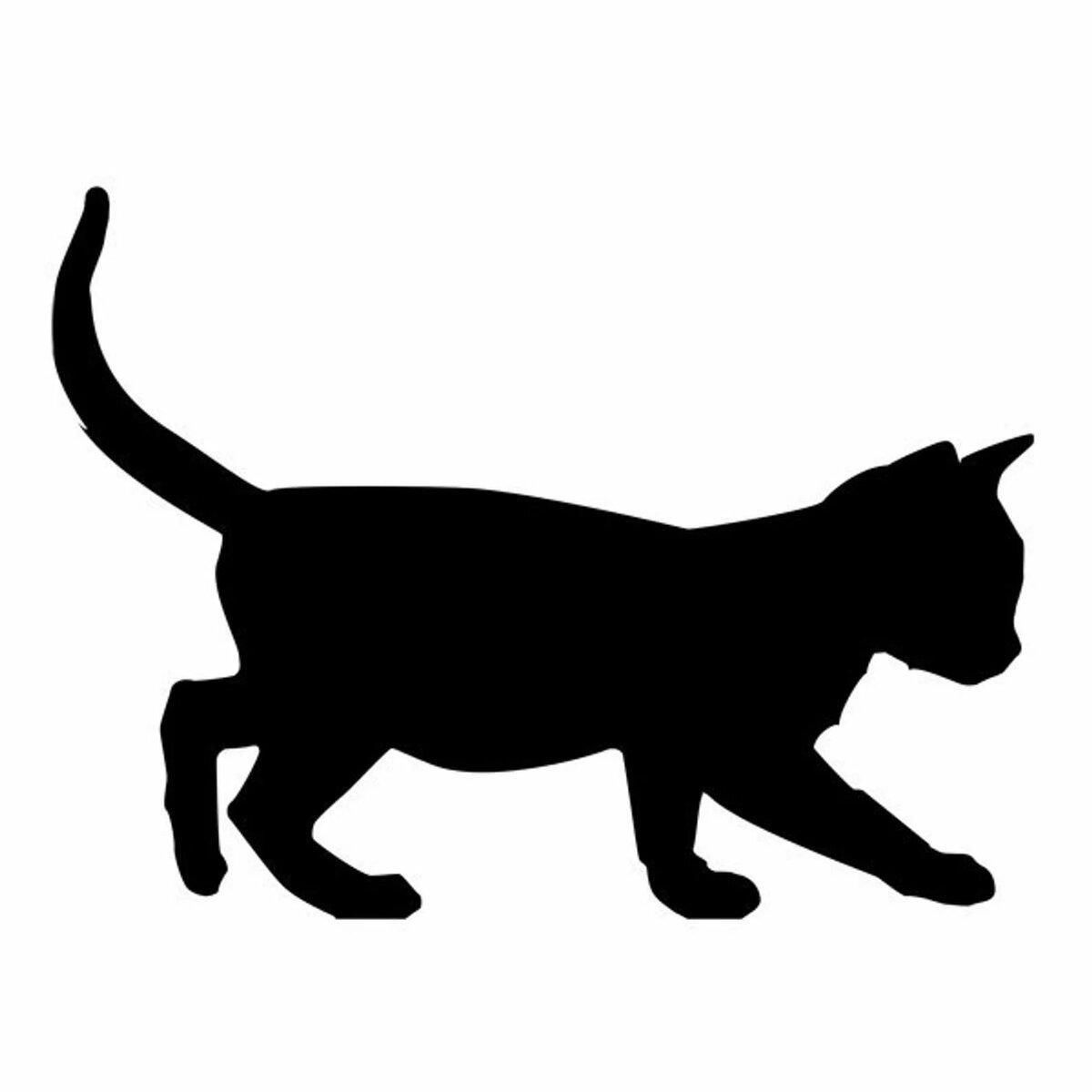 идущий кот вид с боку картинки подсознании хранятся все