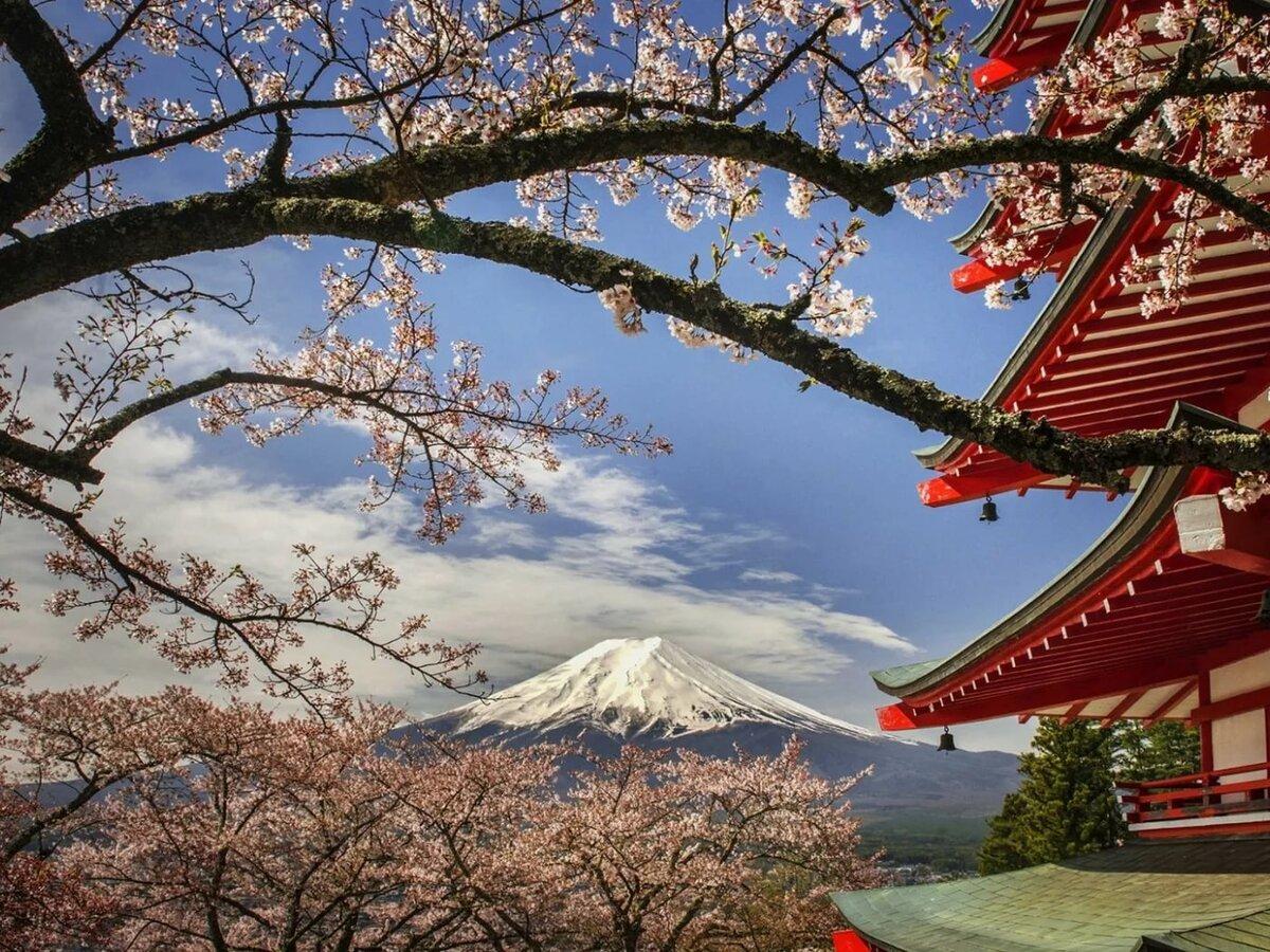 Картинка япония пейзаж пойдет