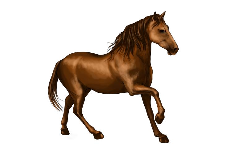 Картинки лошадки для детей цветные