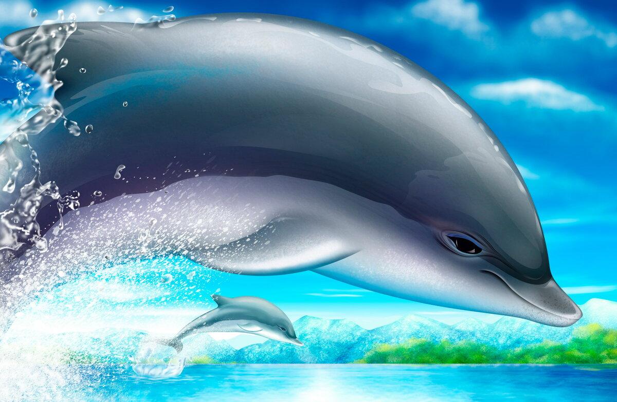 детей дельфины картинки ассоциации этот раз