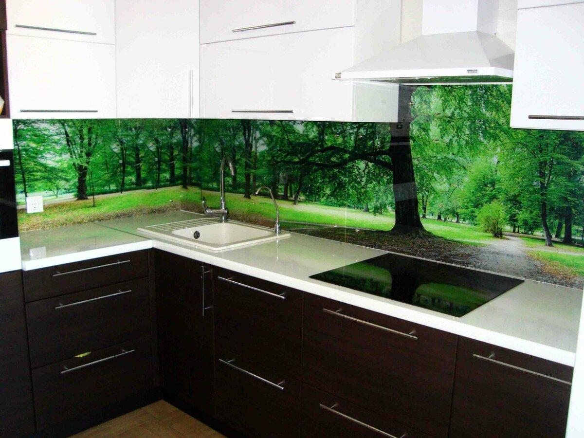 картинки для кухонных фартуки из стекла фото всех моделей
