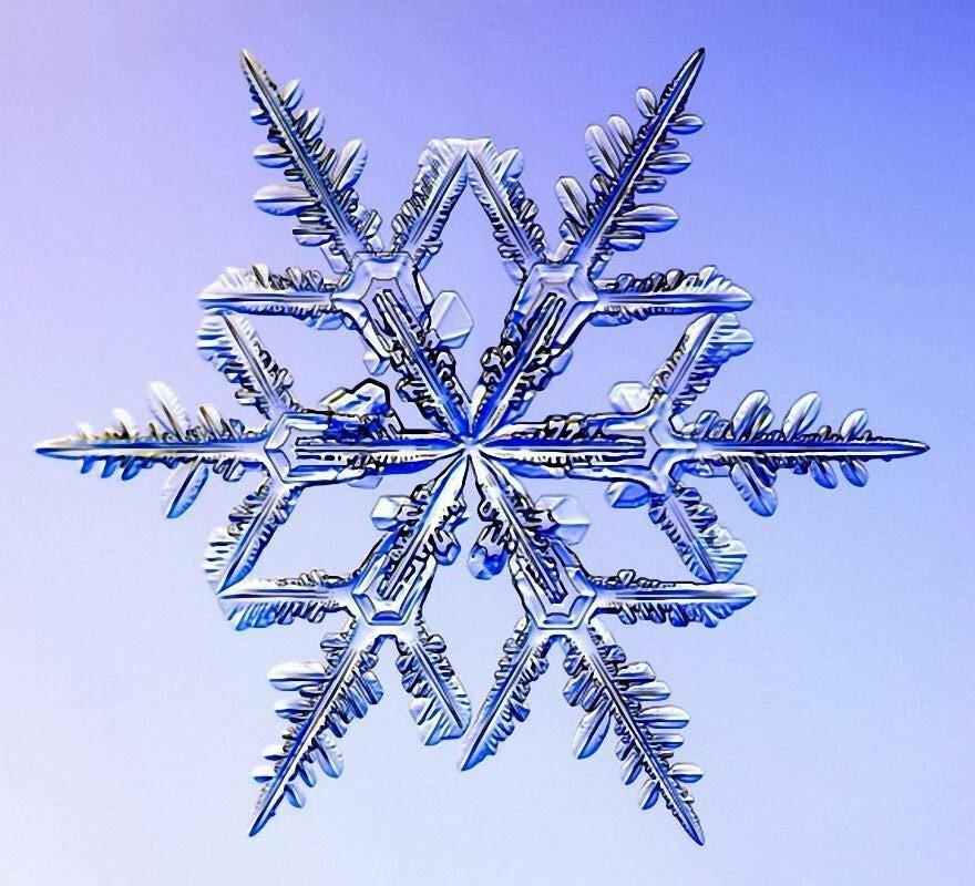 хорошо картинки форм снежинок подняты высоко