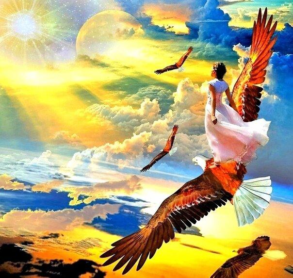 избежать я свободна как птица в небесах картинки вот самому блюду